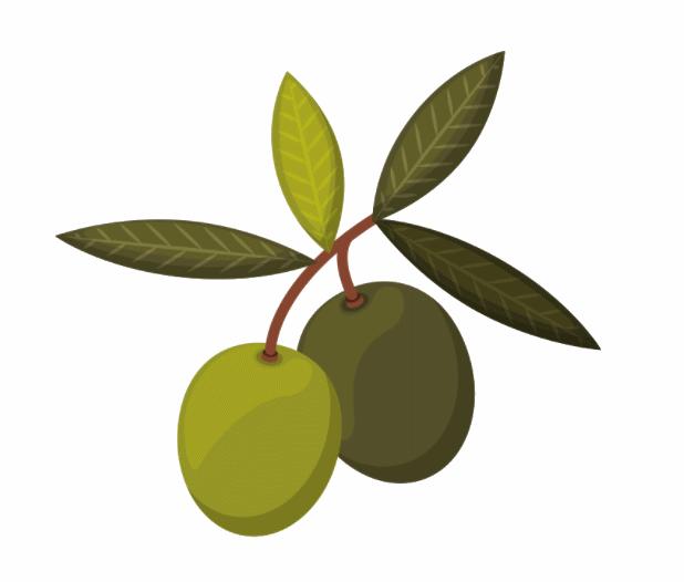 Olives Beroli Aperitivo
